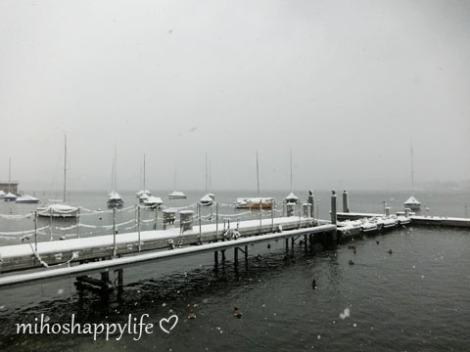 WinterParadiseLU_14
