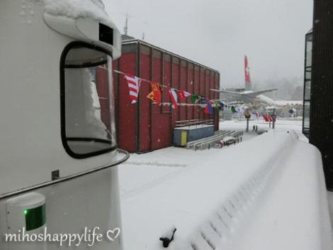 WinterParadiseLU_28