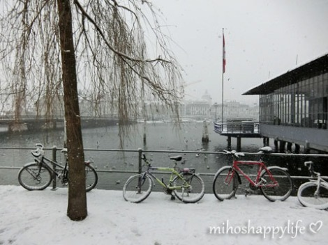 WinterParadiseLU_3