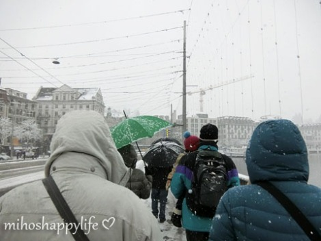WinterParadiseLU_5