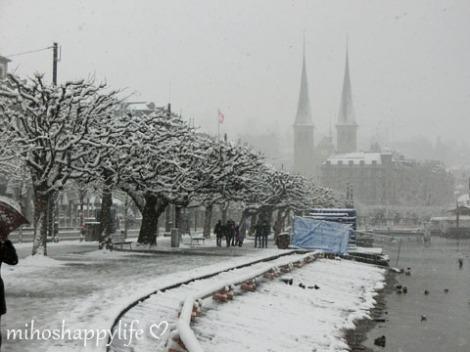 WinterParadiseLU_6