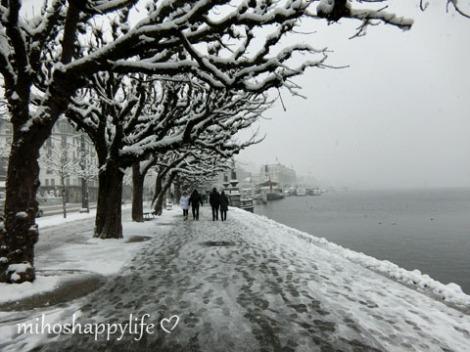WinterParadiseLU_8
