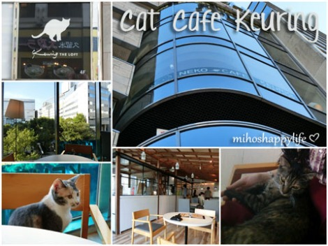 CatCafeKeuring