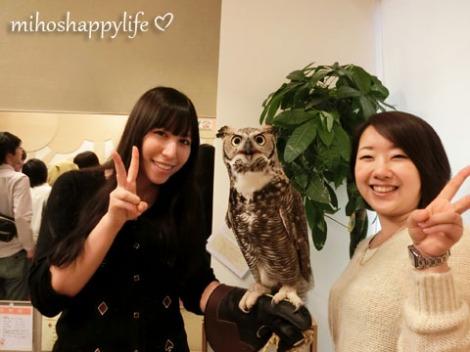 OwlCafe_18