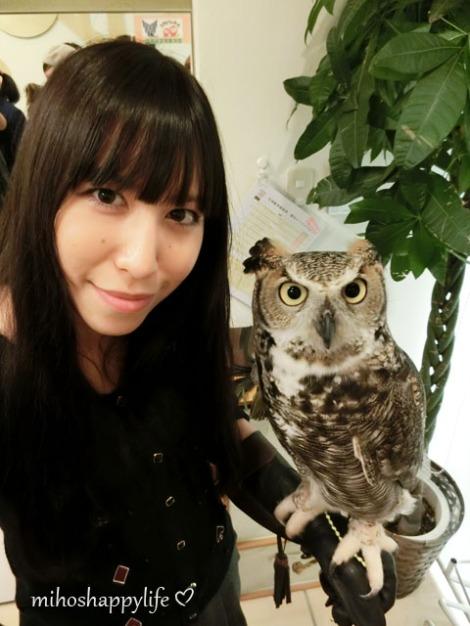 OwlCafe_19