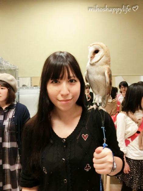 OwlCafe_21