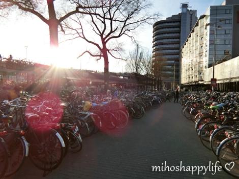 Amsterdam_29