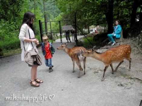 TierparkGoldau-9