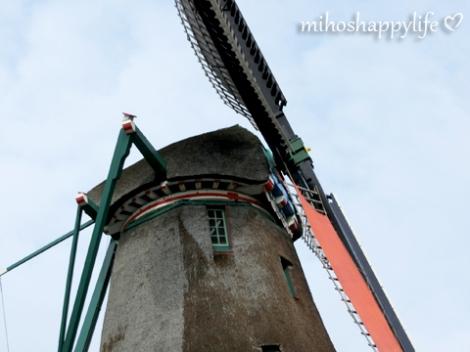 Windmills_70
