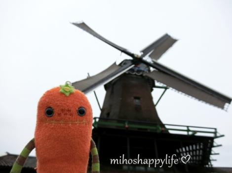 Windmills_75