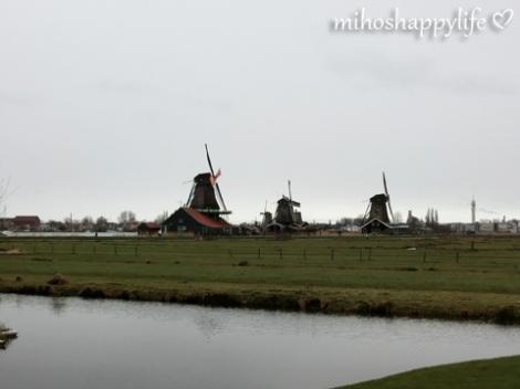 Windmills_76