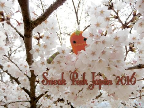 SneakpeekJapan_