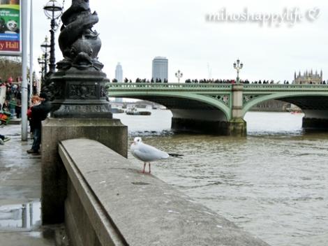 London20152_71