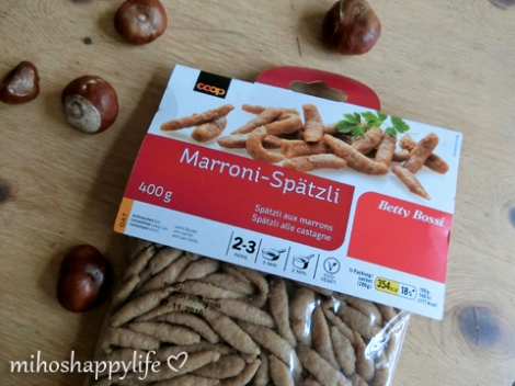 chestnut-marroni-autumn-11