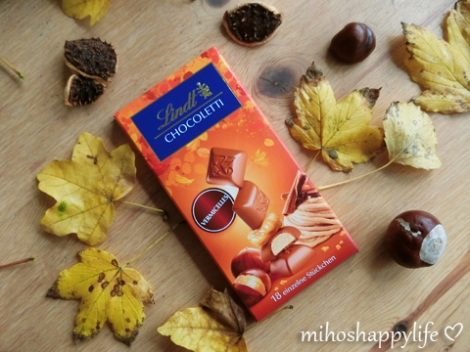 chestnut-marroni-autumn-5
