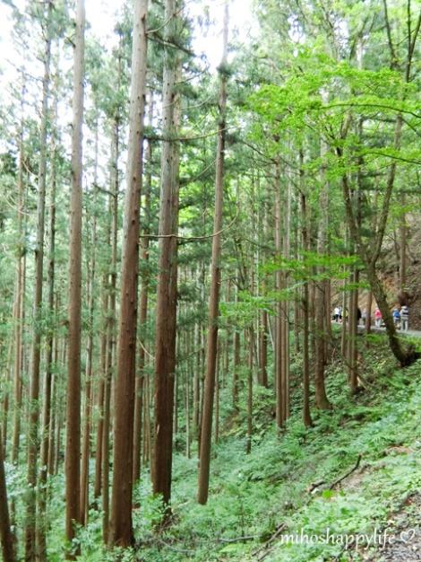 10-days-in-japan-yamanouchi-nagano-9