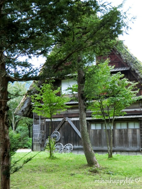 japan-in-10-days-shirakawa-go-takayama-10