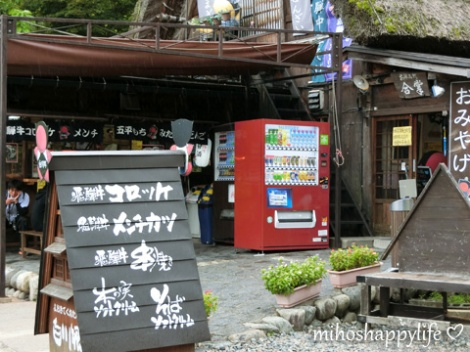 japan-in-10-days-shirakawa-go-takayama-13