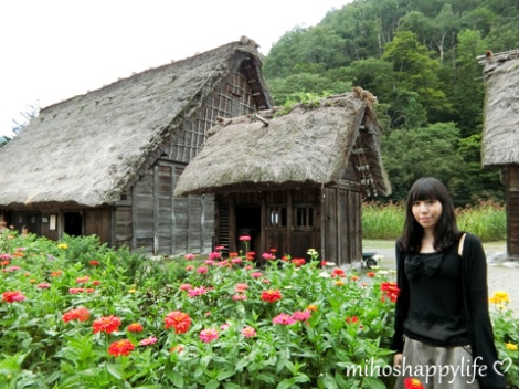 japan-in-10-days-shirakawa-go-takayama-9